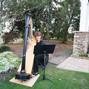 HarpStrings 6