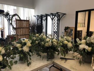 Strelitzia Flower Company 7