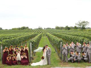 pellegrini vineyards 6