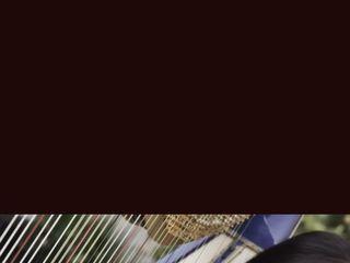 Harp Music By Vonette & Musical Networks 5