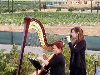 VeeRonna - Harpist 5