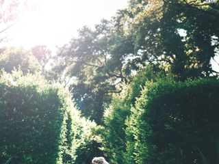 Elizabethan Gardens 2
