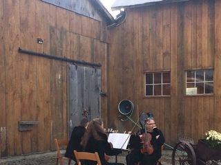 Green Taylor Ensemble 2