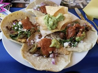 Antique Taco | The Guest Room 5