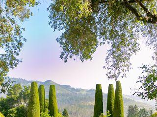 Landmark Vineyards 3