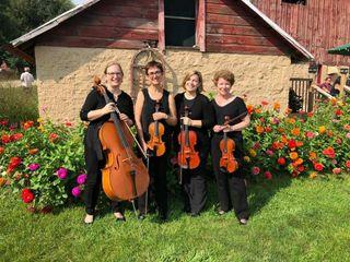 Camerata String Quartet 5