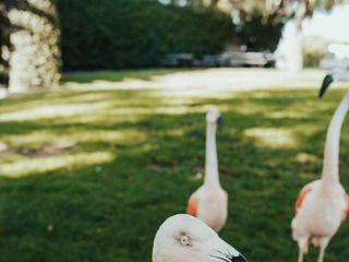 Santa Barbara Zoo 3