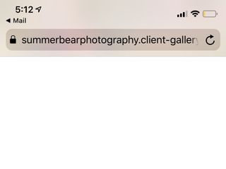 Summer Bear Photography 2
