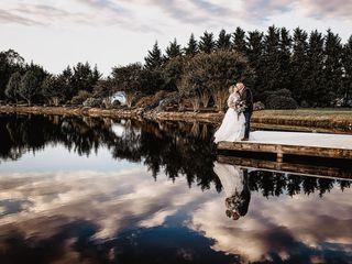 Ann Manley Photography 3
