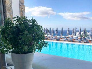 Hellenic Holidays 3