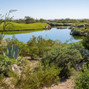 Grayhawk Golf Club 8