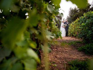 Giracci Vineyards and Farms 2