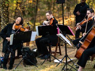 Serenata Strings 2