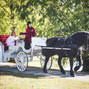 Willow Wind Carriage & Limousine Service 11
