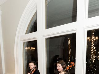 Violin Vita 1
