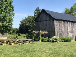 Our Farm 5