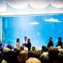 Newport Aquarium 8