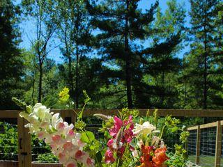 Flower Power VT Farm 4