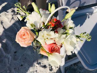 Tide the Knot Beach Weddings 2