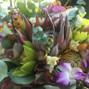 Fukushima Flowers 14