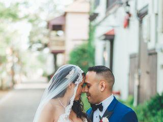 Bow Tie Photo & Video 1
