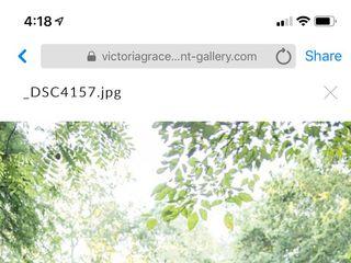 Victoria Grace Photography 3