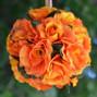 Flower & Balloon Creations by Julia 6