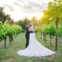 Buena Vista Winery 11