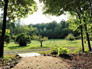 Lilymont Farm 4