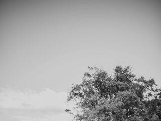Beth Cleveland Photography 5
