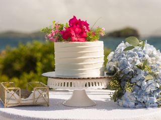 Michael, a St. Thomas Wedding Officiant 4