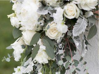 Robin Wood Flowers 2