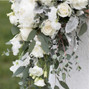 Robin Wood Flowers 6