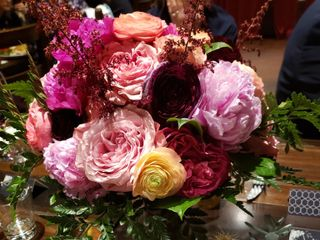 Lovely Peonies 7