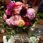 Lovely Peonies 13