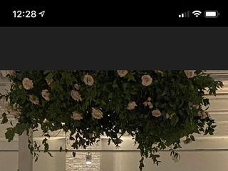 Wild Vine Floristry 1