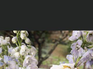 Loreta Daka Floral Boutique 5