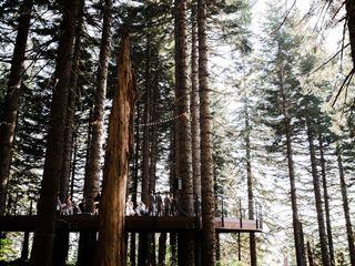 Noble Ridge Tree Deck 2