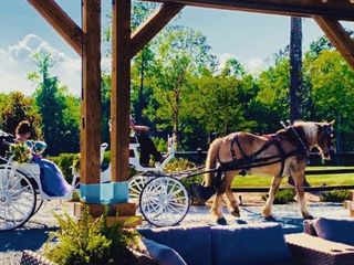Cedar Creek Ranch Weddings & Events 4