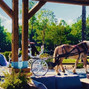 Cedar Creek Ranch Weddings & Events 8