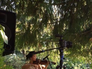 Arethusa Strings 5