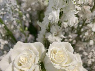 Harrington Flowers 5