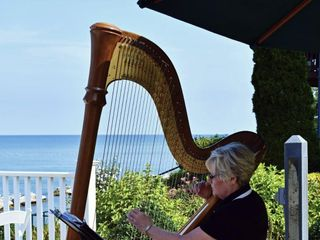 Debbie Beck - Harpist 1