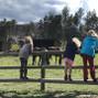 Stove Prairie Ranch 8