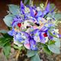 True Vine Flowers 9