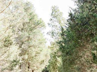 Tuckahoe Plantation 7
