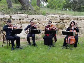 Cello Vida 2