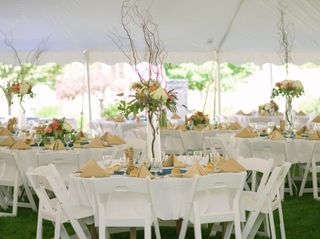 Wedded Perfection 1