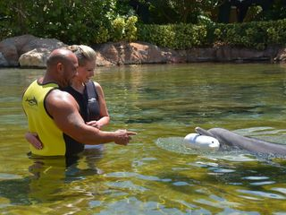 Discovery Cove - SeaWorld Parks & Entertainment 6