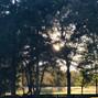Rockin' T Meadows 9